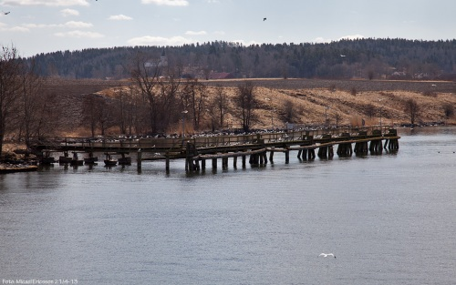 Va detta Ljungs bro? Gissa varför detta namn ;)