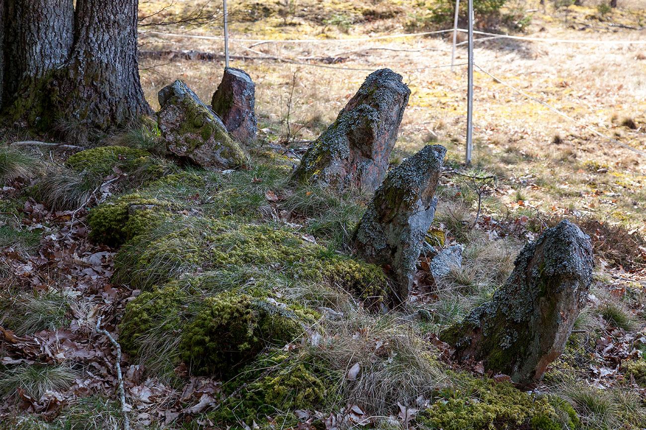 Femstenarör längs rågången mellan Onsjö och Överby uppsatt 1786. Foto 2021-04-18